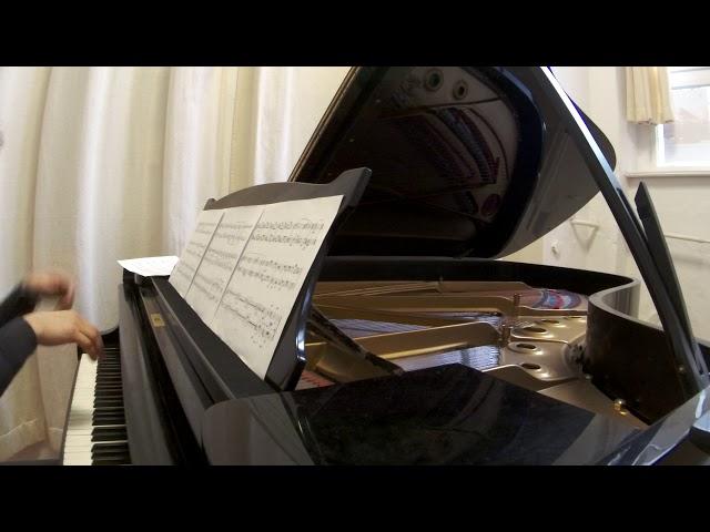 Direct music #24 Elena Tobisch
