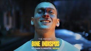 The Motans - Bine Indispus (Dj Dark & Mentol Remix) Lyric Video