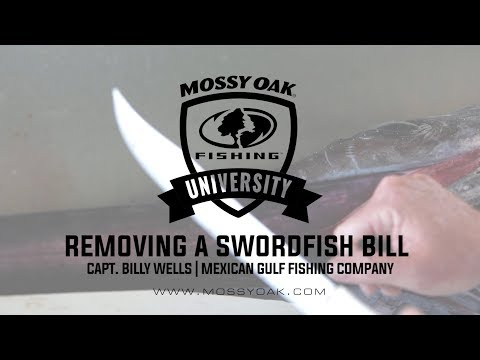 How To Remove A Swordfish Bill
