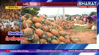 దళారుల దగ | Mediators Adapt: Pineapple Farmers Under Deep Crisis With Too Low Prices | Srikakulam