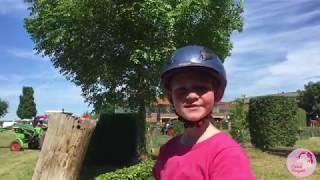 Emmas Ponywelt - Regionalschau Welsh Zülpich 2017