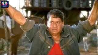 M. S. Narayana Ultimate Back to Back Comedy Scenes | Telugu Comedy Scenes | TFC Comedy