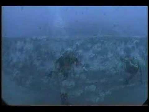 Arthur C. Clarke's last dive
