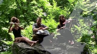 Mandàra - Prisma   Handpan - Flute - Violin