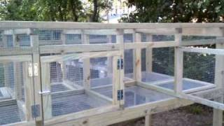 Building Rabbit + Chicken Cage. Part 5