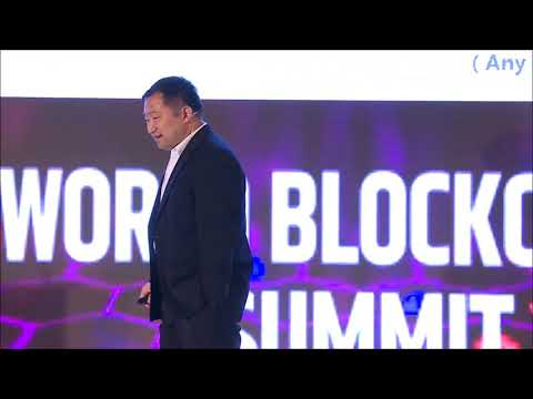 Eric Gu, the founder of Metaverse Foundation, Delivered a Speech at  World Blockchain Summit, Dubai