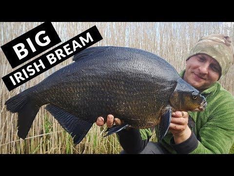 Bream Fishing - Memories Of Specimen Bream From A Wild, Irish Lough (2018)
