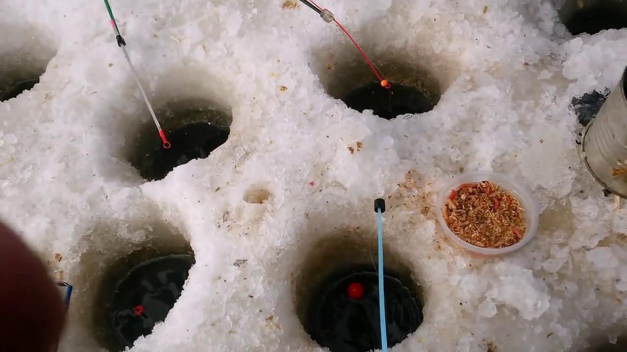 Рыбалка на карася/Челябинск/Юный рыбак