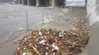 Los Angeles Flash Flood - January 20, 2011