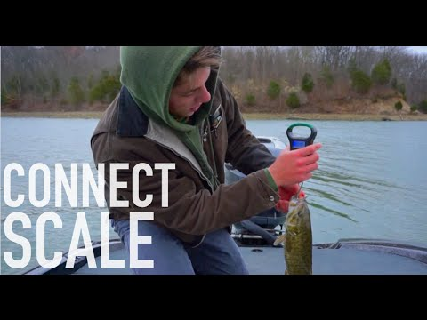 Fishing Scale That Connects To Your Phone?
