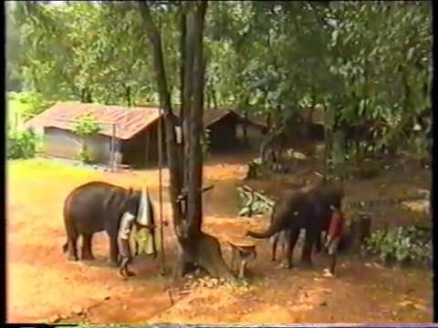 India Film-Goa 2006 Part 1