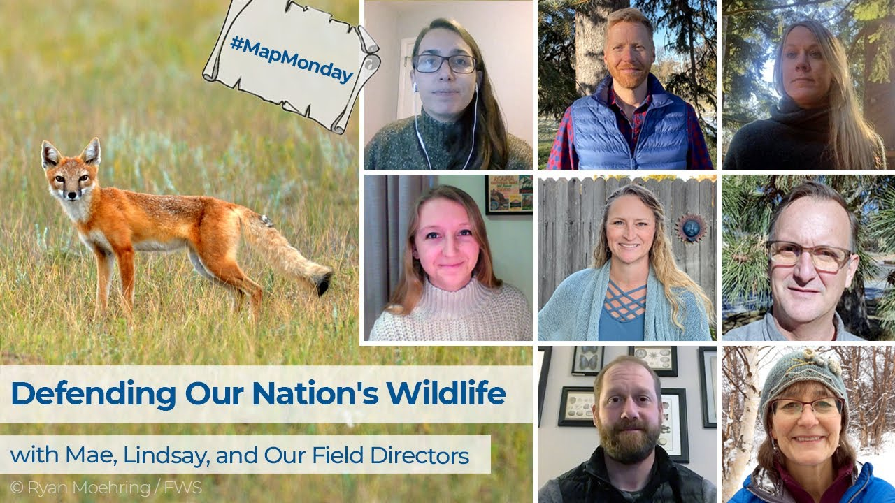 Map Monday - Defending Our Nation's Wildlife