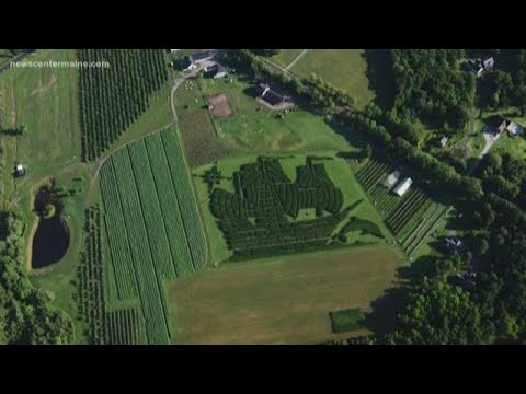 Levant corn maze named top 10 in nation