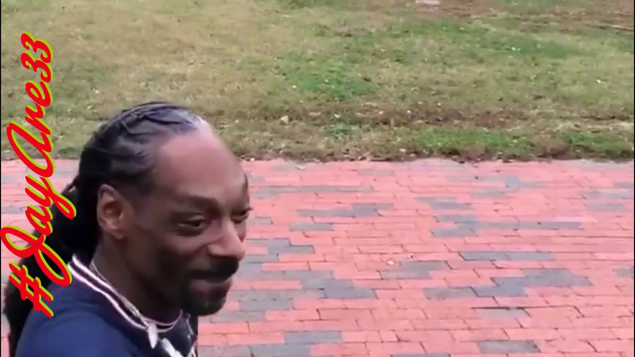 "Snoop Dogg smokes blunt outside White House: ""Fuck the president"" January 22, 2020"