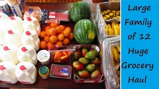 Large Family of Twelve Grocery Haul May 2016