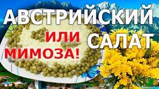 Салат АВСТРИЙСКИЙ нежный ответ салату МИМОЗА и ничего лишнего!