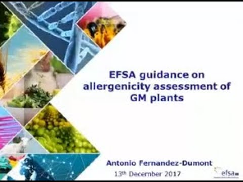 Webinar: presentation of the guidance on allergenicity assessment of genetically modified plants