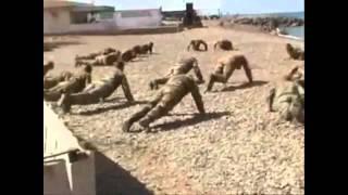 Legion Etrangere / Иностранный легион / Foreign Legion