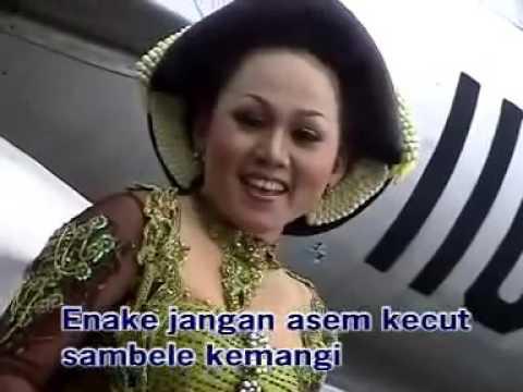 Campursari Gagrak Anyar SAMBAL KEMANGI  Vo c Ririk  S