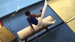 спортивная гимнастика 2 разряд Конь