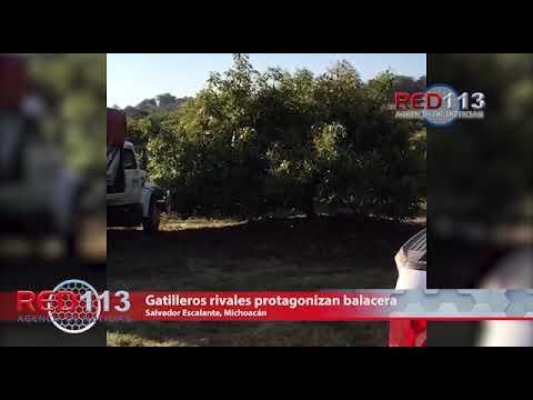 VIDEO Gatilleros rivales protagonizan balacera en el municipio de Salvador Escalante