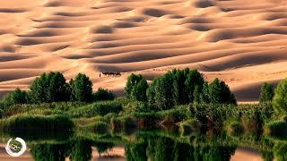 1 Hour Arabian Music | Relaxing Middle Eastern Desert Music