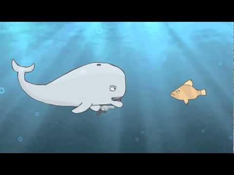Depressed whale