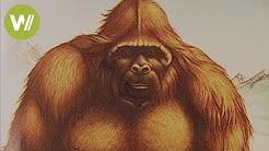 Bigfoot und Yeti - Sind es Fabelwesen oder haben sie wirklich gelebt? (360° - GEO Reportage)