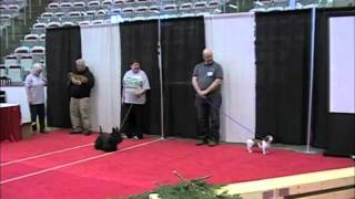 Peaa Earthdog Demo At The Calgary Pet Expo May 5-6, 2012