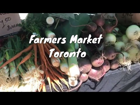 Farmers' Market Trip in Toronto | Farmers' in Canada | Indian Youtuber | Indian Vlogger