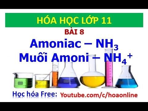 Hóa học 11 || Bài 8 – Amoniac và muối Amoni