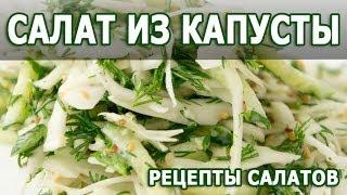Рецепты салатов. Салат из капусты простой рецепт диетического блюда