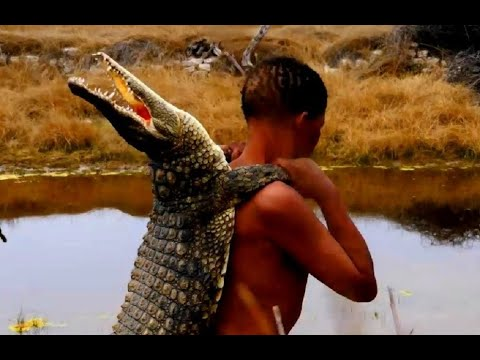Spear Hunting African Crocodile Cooking - Hunt Catch Cook