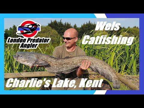 36hr Catfishing Session @ Charlie's Lake, Kent - London Predator Angler