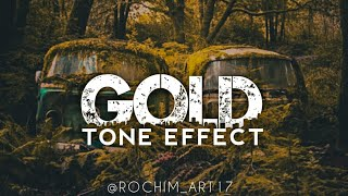 Tutorial Lightroom Android - Gold Tone Effect