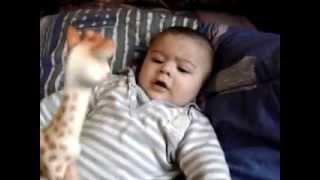 видео Игрушка жирафик Софи