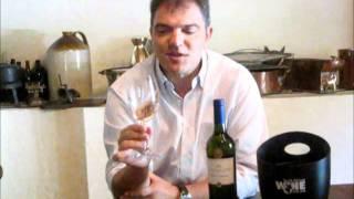 Wine.co.za S Spotlight Video On The Blaauwklippen White Zinfandel With Rolf Zeitvogel - March 2012