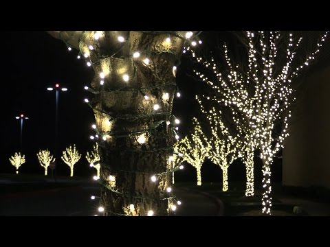 LED Christmas Lights - Difference Between Retail and Pro Grade