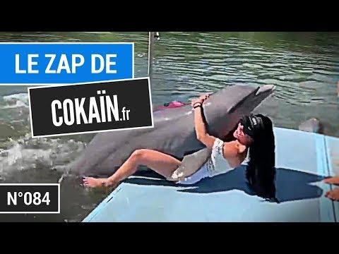 Le Zap de Cokaïn.fr n°084