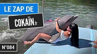 Le Zap de Cokaïn.fr n°084...