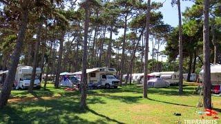 Auto camp Medulin (Medulin)