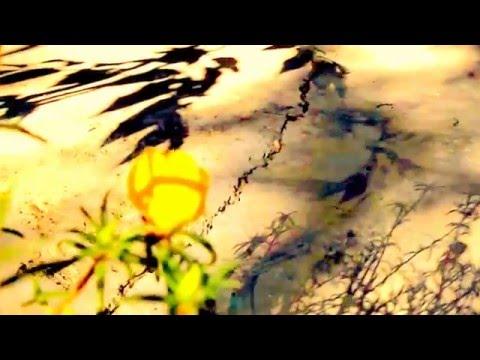 Schumann - Langsam (Slowly) by Bozo Paradzik & Maria Sofianska