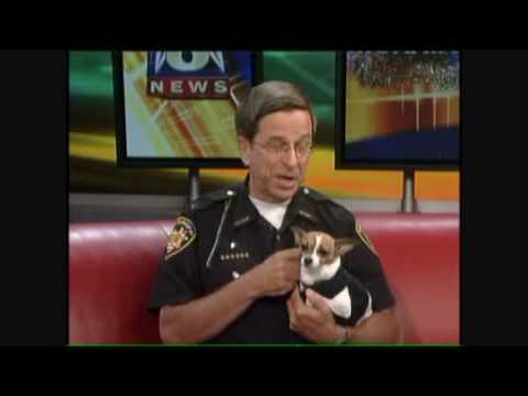 World's Smallest Police Dog