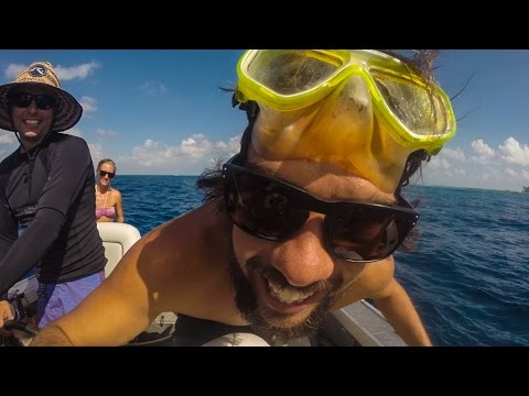 Scuba Diving With Sharks And Mantas Remote Cocos Keeling!- Sailing SV Delos Ep. 81
