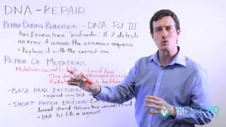 MCAT DNA Repair