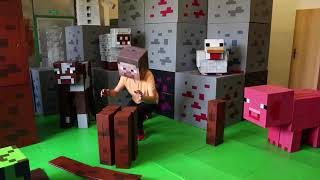 MINECRAFT REAL LIFE Fence for Animals - IRL Animation