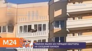 В Сети обсуждают видео, на котором ребенок спасается из горящей квартиры - Москва 24