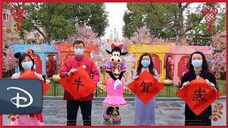 Lunar New Year Greetings | Shanghai Disney Resort