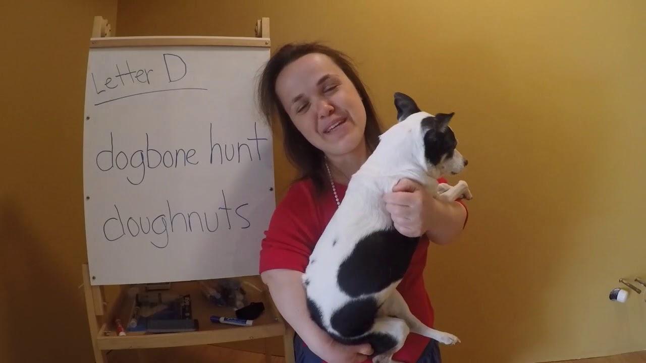 Letter D For Dog Bone Hunt