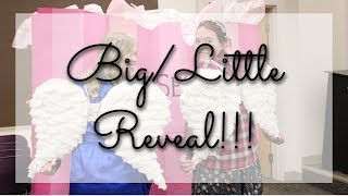 Big/Little Reveal // KBΓ